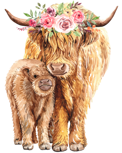 Cow and calf with flower